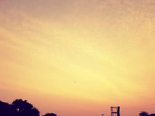 surajgarh review